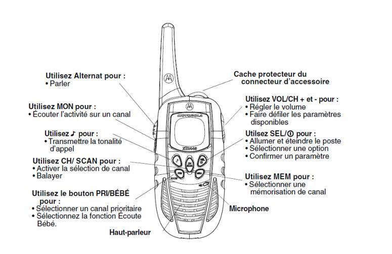 xtr446